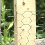 Keep Animals Out of Your Garden by BLACK+DECKER