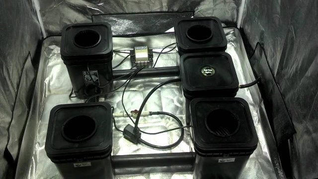 recirculating deep water culture hydroponic grow system