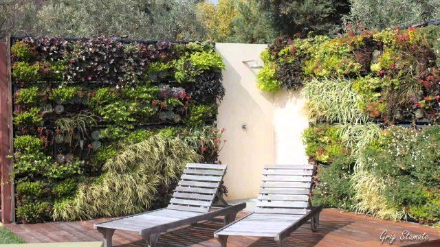 Wall Gardens  – Creative Ideas for Urban Outdoor Spaces