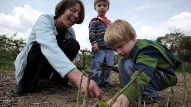 Garden State on Your Plate – Asparagus. Princeton School Gardens Cooperative