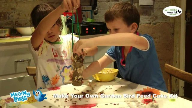 The Wildlife World 'Me and My Birds' Garden Bird Feeder Kit Product in Use Video