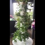 Tower Garden: A couple 'key' planning tips.