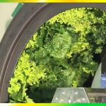 Vertical Gardening DIY – (Aquaponics, Rotary Hydroponics and Vertical Farm system)