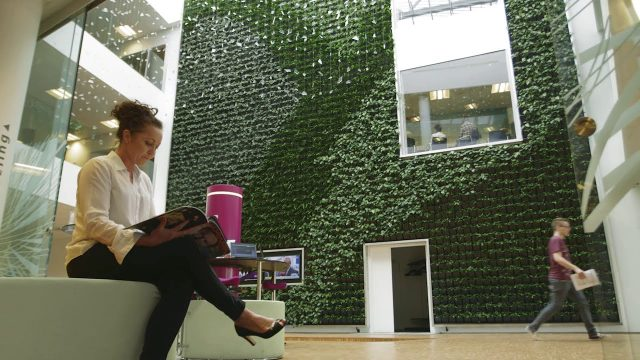 Natural Greenwalls UK