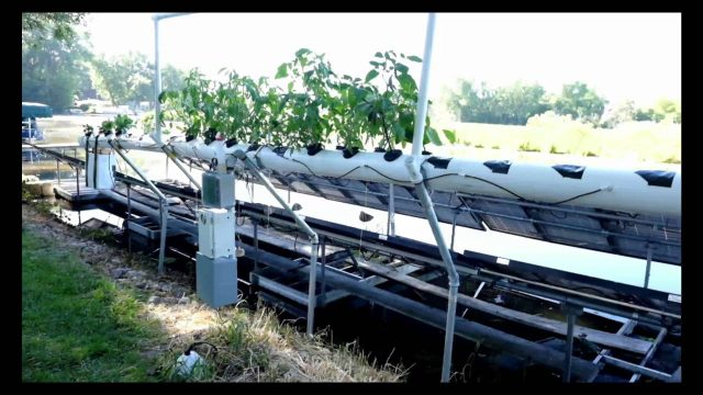 Geothermal Aeroponic Horizontal Garden – Do it yourself build to grow your own food.