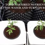 How to Setup a home made DWC Hydroponic System To grow Giant Tomato