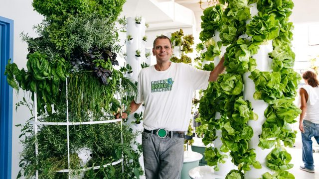 Stephen Ritz, Founder of the Green Bronx Machine: His Story