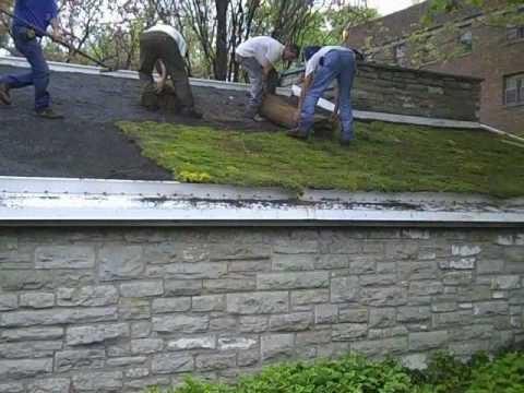 Sloped Green Roof Installation Slideshow
