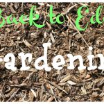 Back to Eden Gardening – Is it Really Worth it?
