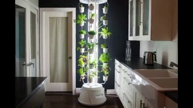 Ten Innovative Indoor Gardening Ideas