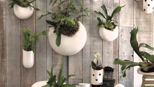 STUNNING COLLECTIONS CERAMIC WALL PLANTERS DESIGN INSPIRATION