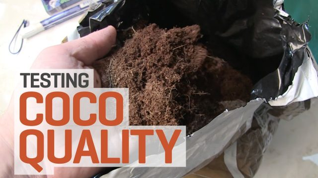 Is Your Coco Coir Suitable for Hydroponics?