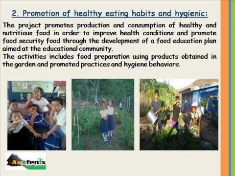 Creating school gardens and tree nurseries for integrated education in Nicaragua