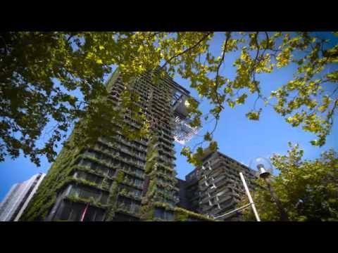 The Garden Gurs – Central Park   Living Wall