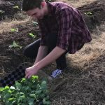 Sociohorticulture Service Learning Experience