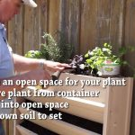 How to Plant Your New Age Garden Living Wall Vertical Garden