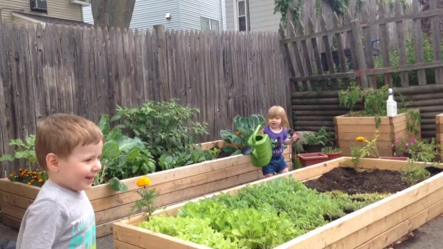 Growing Veggies & Happy Kids in the Garden