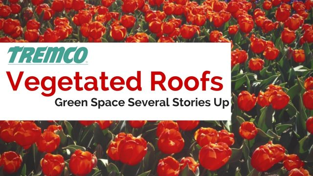 Vegetated Roofs- Tremco's Sustainable Innovation