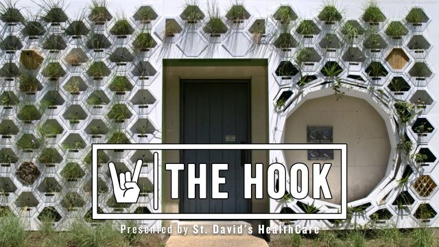 The Hook: Living Wall