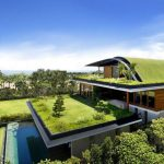 Green roofs are engineered, vegetated roof covers consisting of plants and growing media.