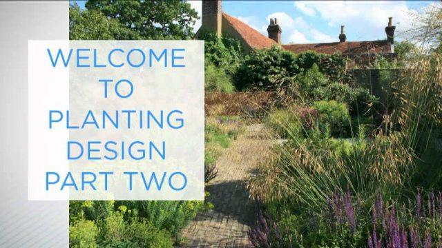 Planting Design Pt.II