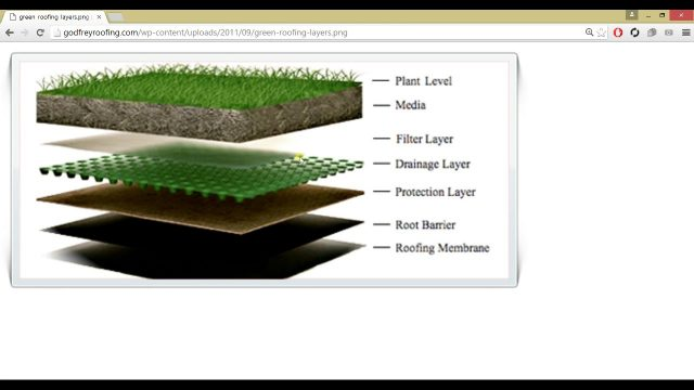 Autodesk Revit 2016   The Green Library Project   Designing a Green Roof