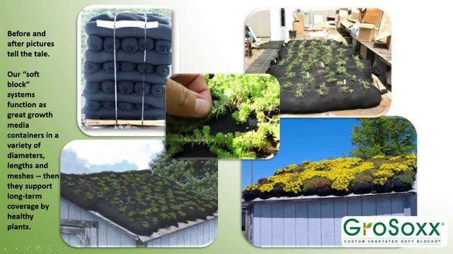 Filtrexx Green Roofs Webinar