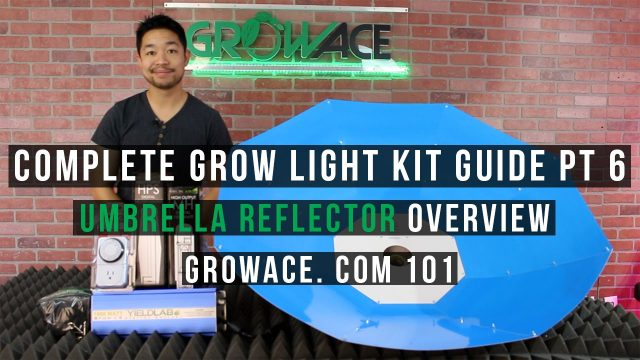 Complete Umbrella Light Kit Guide for Indoor Gardening
