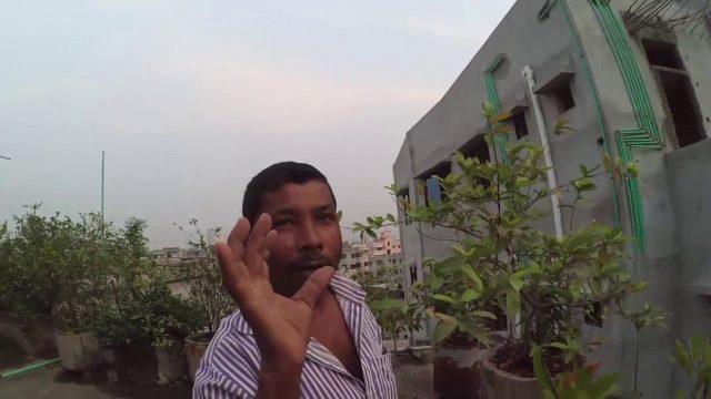 rooftop gardening bangladesh _ Make a roof garden | Small town garden ideas