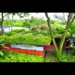 Ecologically Friendly Green Roof Systems and Green Walls by Elmich Australia