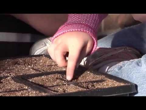 Gardening videos for children | gardening by the foot plans