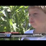 Never Stop Learning: Summer Gardening