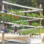 DIY Hydroponic Garden Tower   The ULTIMATE hydroponic system growing over 100 plants in 10 sq feet
