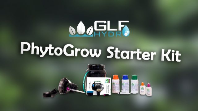 GLF PhytoPot Starter Kit | Affordable Home Hydroponics Growing System