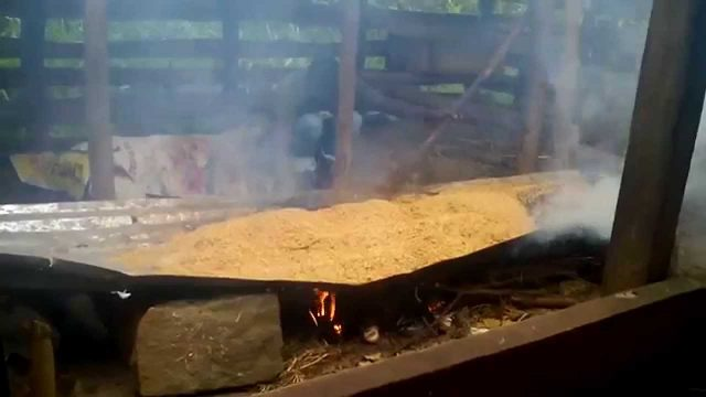 Hydroponic farming: Smoking rice husks in hydroponic trough system
