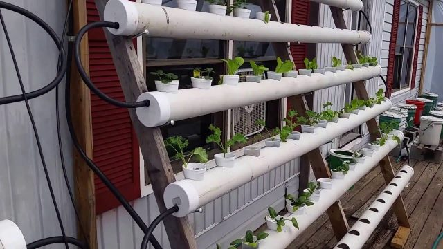 Leaking Pipe on Our DIY Hydroponics System