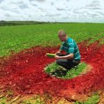 Strider Agri – Welcome to the future of agriculture