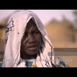 Expanding Africa's Great Green Wall
