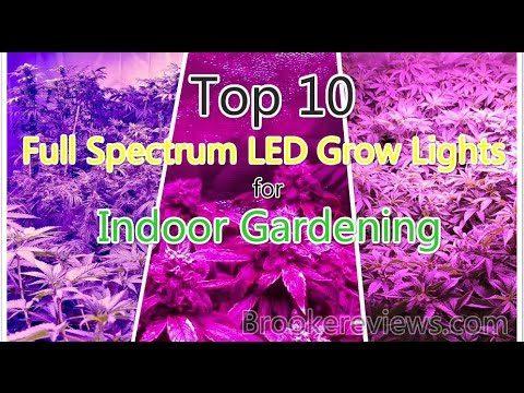 Top 10 Full Spectrum LED Grow Lights for Indoor Gardening/Plants on sale