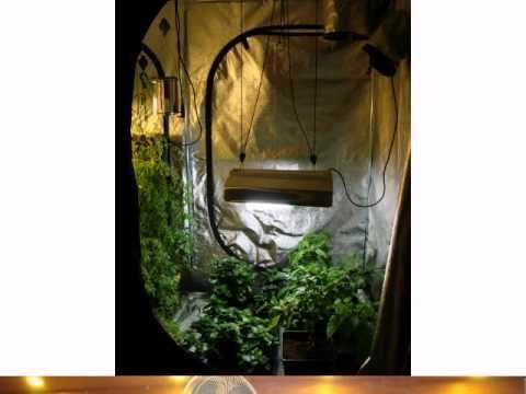 Grow Shop in Ireland, Dublin Indoor Gardening