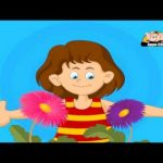 Learn About Plants – Life Cycle