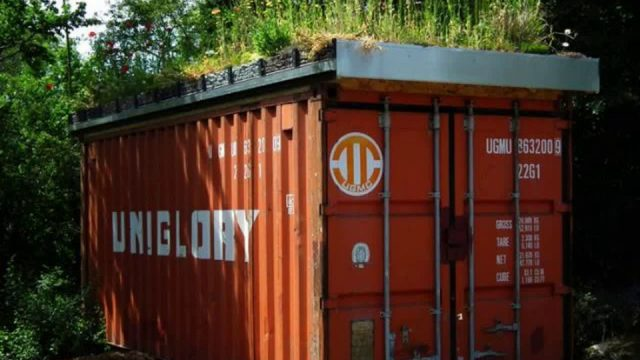Shipping container house green roof