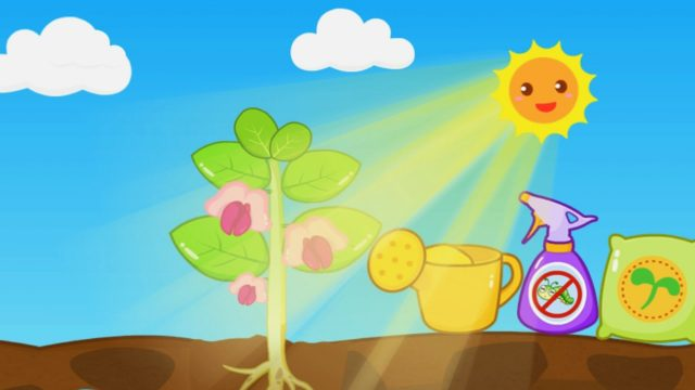Game for Kids. Small gardener: Sowing seeds – plants bear fruit
