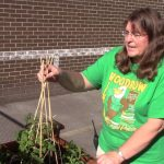 """2016 Bright Ideas winner Sandy Summerlin explains the """"Elevated Garden"""" student project"""