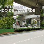 Jardines verticales bajo un puente en México, por Verde Vertical