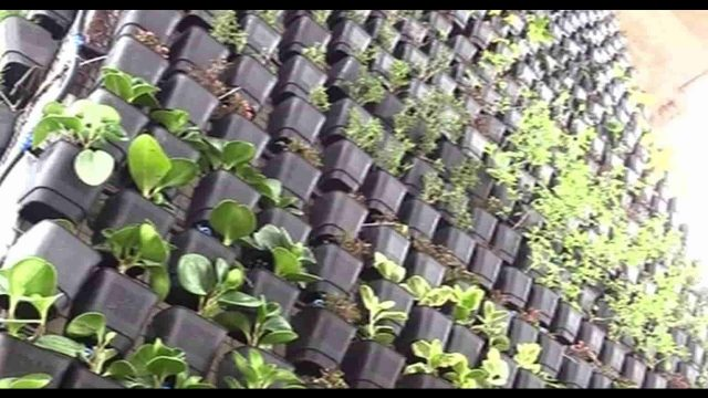 Prepping How To's, Vertical Gardens, Solar, DIY, Off Grid