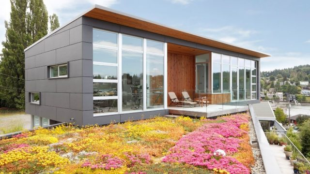 12 Modern Homes with Spectacular Green Roofs