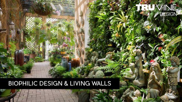 Architecture Spotlight #84 | Living Walls by TruVine Design | Delray Beach, Florida