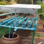 #1 ការដាំបន្លែលក្ខណតូចនៅលើទឹកដោយប្រើចរន្តទឹកហូរ កម្ពុជា  Hydroponic growing in my house, Cambodia