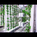 The Bright Agrotech ZipFarm™